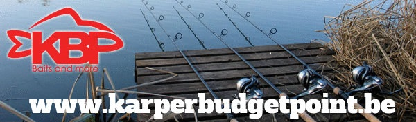 Karperbudgetpoint
